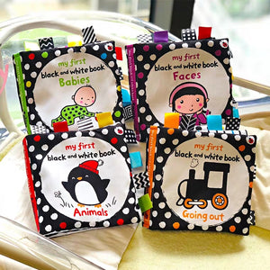 [Ready Stock] Baby's First Books (Set of 4)