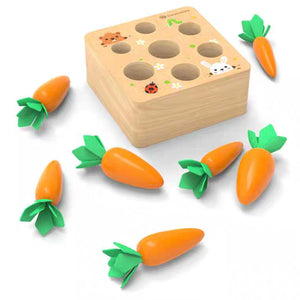 [Ready Stock] Carrot Knobbed Cylinders