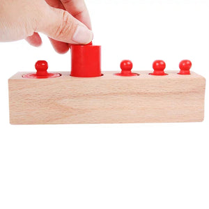 [Ready Stock] Montessori Knobbed Colourful Cylinders