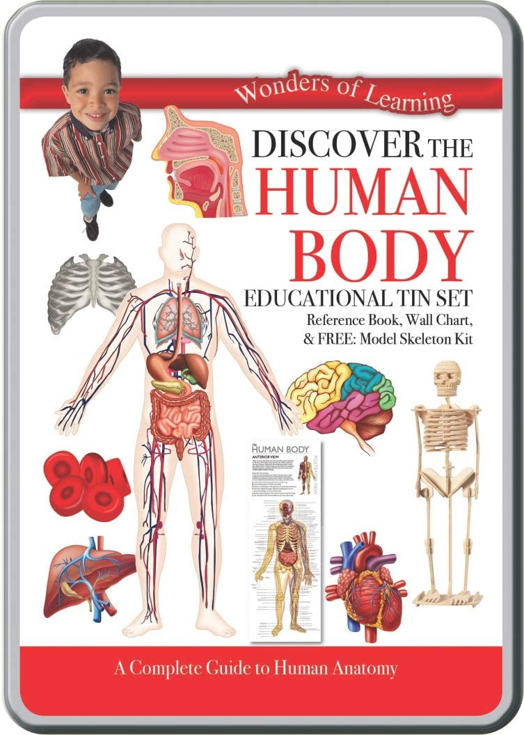 Human Body Tin Set