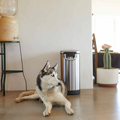 large pet food can - lifestyle dog sitting by can