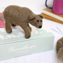 Load image into Gallery viewer, Grizzly Bear Needle Felting Kit