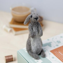 Load image into Gallery viewer, Rabbit Needle Felting Kit
