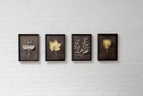 Olive Branch Shadow Box - Antique Nickel