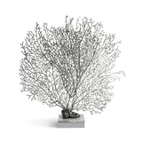 Michael Aram Fan Coral Sculpture