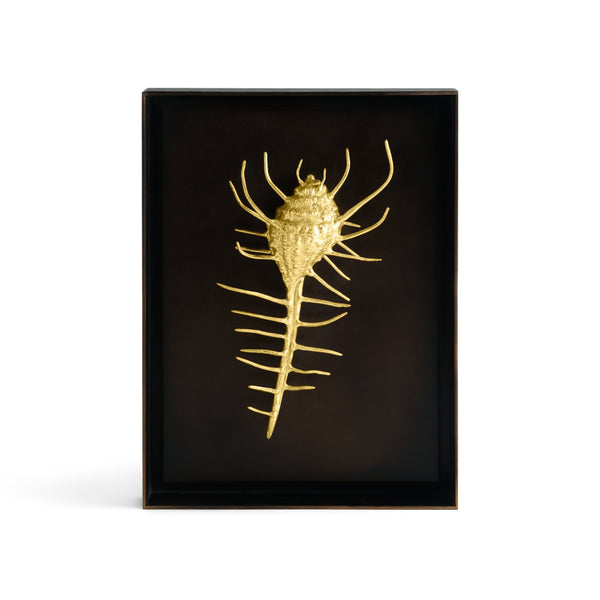 Michael Aram Venus Comb Shell Shadow Box