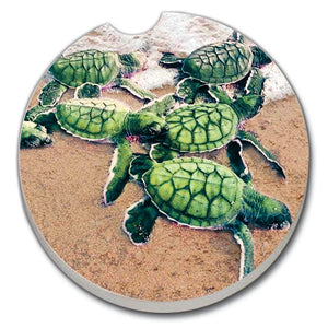 Car Coaster - Baby Sea Turtles