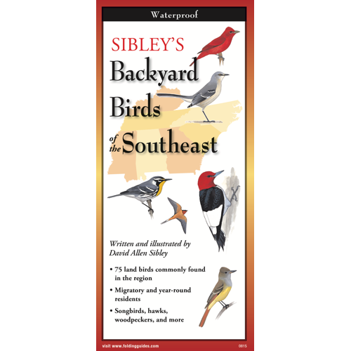 Folding Guide - Backyard Birds of the Southeast