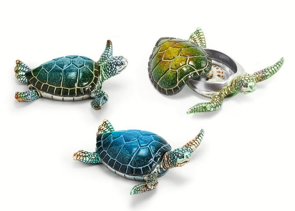 Turtle Trinket Box - 3 Assorted Colorations
