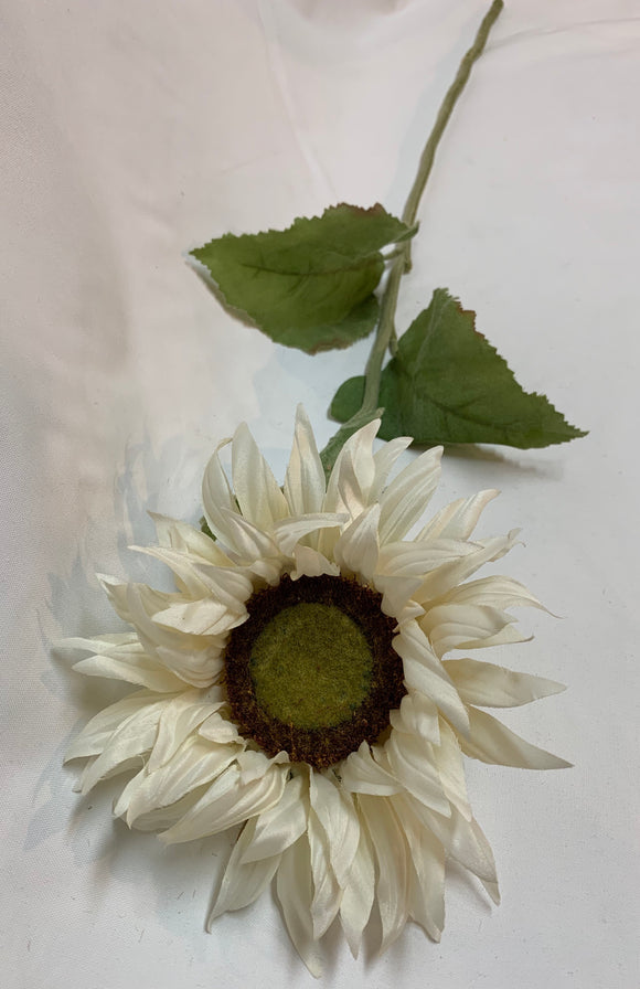 Long Stem Floral - White Sunflower