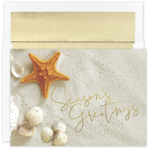 Starfish Greetings Warmest Wishes Boxed Holiday Cards