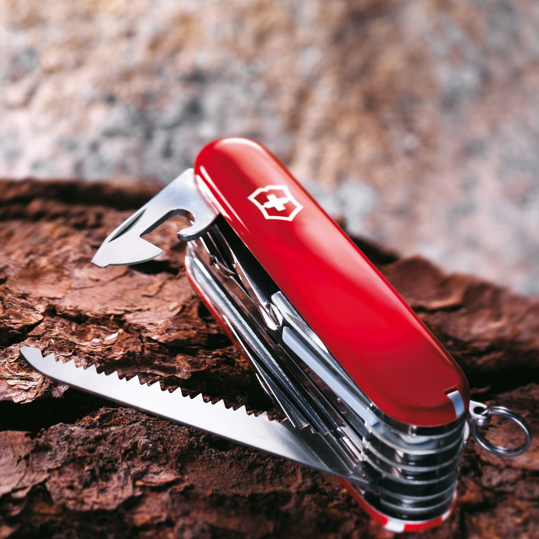 Medium Victorinox Swiss Army Knives at Swiss Knife Shop