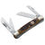 Boker Jigged Brown TS Congress Pocket Knife at Swiss Knife Shop
