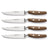 Wusthof Epicure Four Piece Steak Knife Set