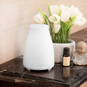 Secret Island Aroma Oil Diffuser and Humidifier