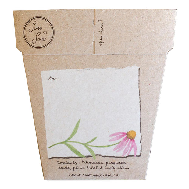 Sow n Sow greeting card - Echinacea