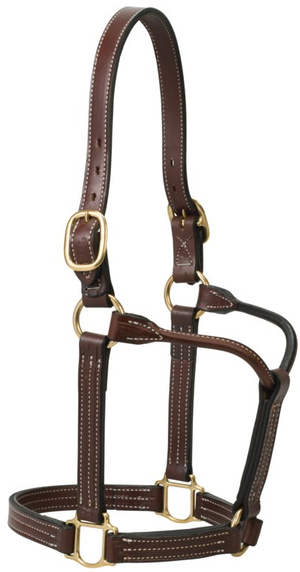 Weaver Thoroughbred Leather Halter