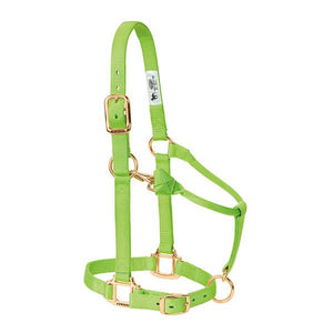 Weaver Adjustable Lime Green Halter