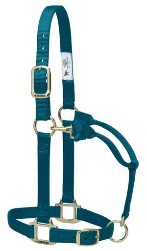 Weaver Adjustable Teal Green Halter
