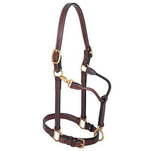 "Weaver 1"" Track Leather Halter"