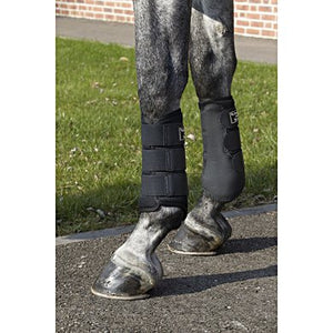Back on Track Brush Boots 3D Mesh