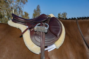 Professional's Choice VenTech Hunter Show Pad