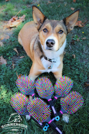 Tail Tamers Rainbow Paddle Brush