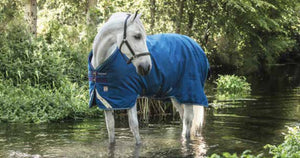 Horseware Rhino Plus Turnout 100g