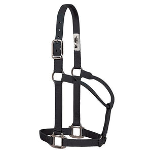 Weaver Original Non-Adjustable Halter with Chrome Plated Hardware