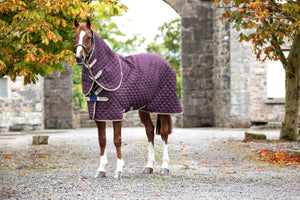 Horseware Amigo Plus Disc Front Stable Rug 200g