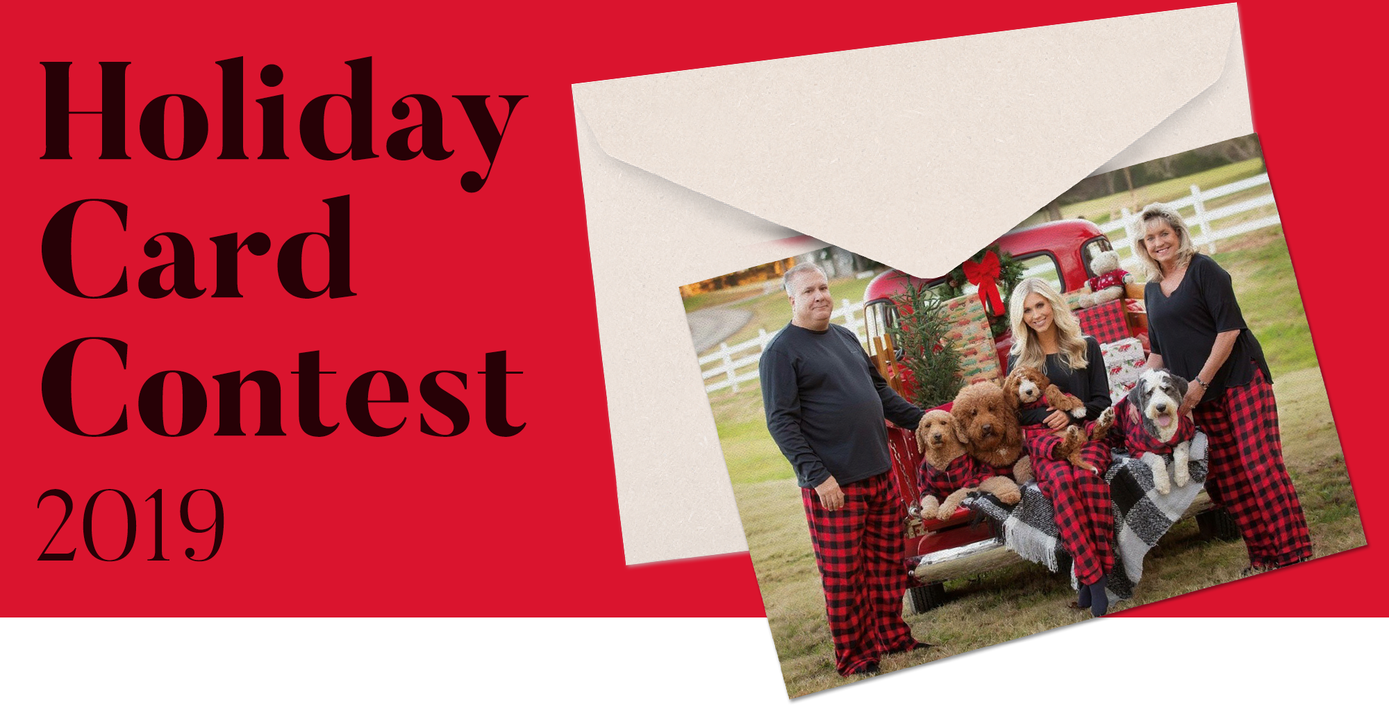 fabdog's annual holiday card contest 2019