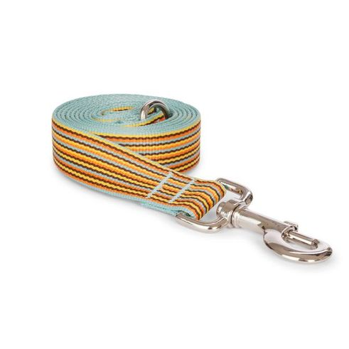 Sky Mini Stripe Leash
