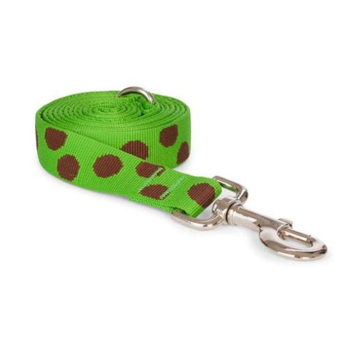 Green Polka Dot Leash