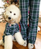 Green Plaid Matching Human Pajamas