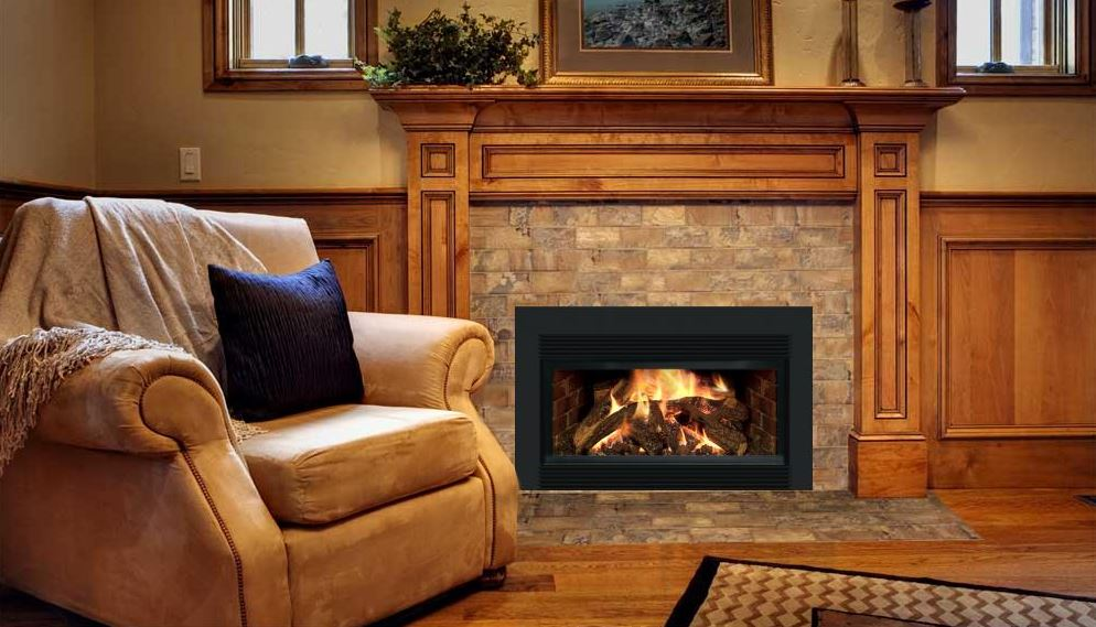 Mendota D-30 Gas Fireplace Insert