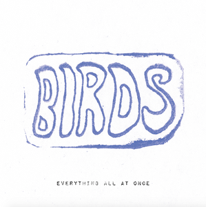 BIRDS - Everything All At Once