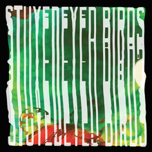 Load image into Gallery viewer, Stuyedeyed / BIRDS Split 7""