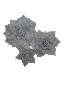 Dahlia - Grey colour