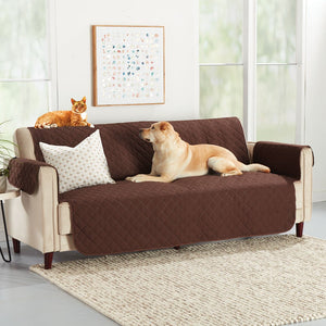 Beige couch with Hempvana Pets Couch Protector on it; Cat and dog sit on top