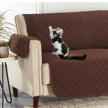 Load image into Gallery viewer, Naughty Kitty trying to claw couch, but Hempvana Pets Couch Protector is protecting it