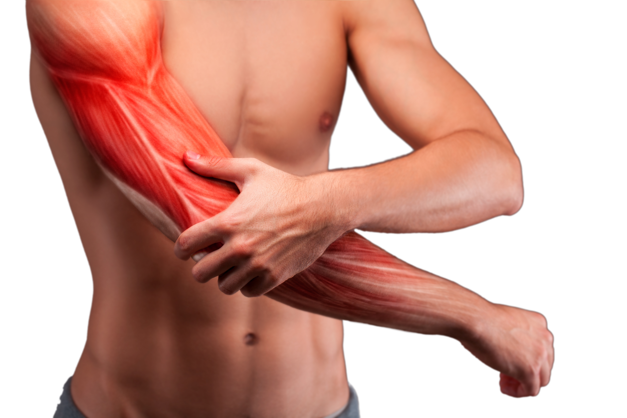 Man's upper body. Left hand holding right arm with rendering of muscles to show muscle pain.