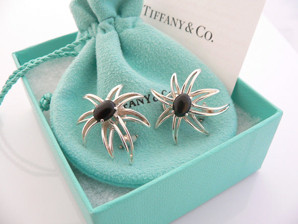 Tiffany & Co Silver Onyx Fireworks Clip On Earrings Gift Pouch Gemstone Love