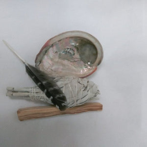 New Mini smudge kit w/abalone shell & feather - Edy's Treasures