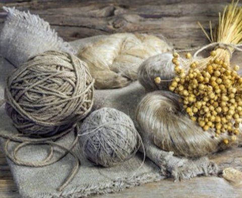 flax seeds to fibers to linen