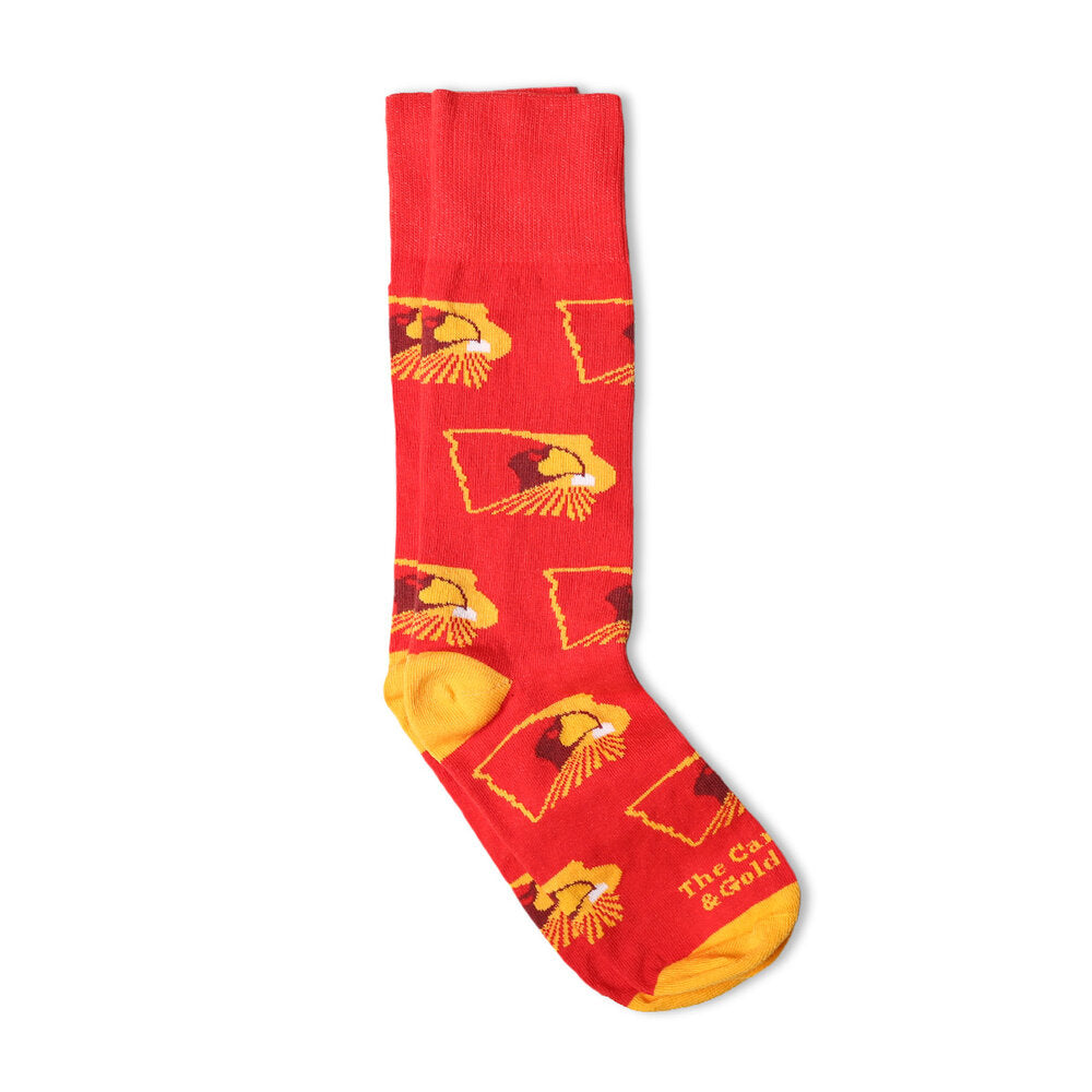 The Cardinal and Gold State Socks