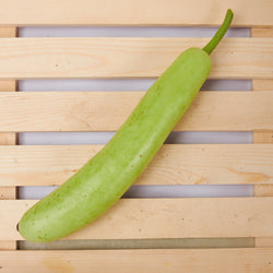 ORGANIC BOTTLE GOURD (PER PIECE 600-800 Grams)