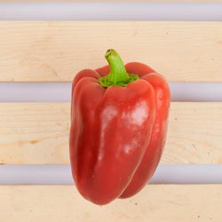 Organic Red Bell Pepper (Per 250 Grams)