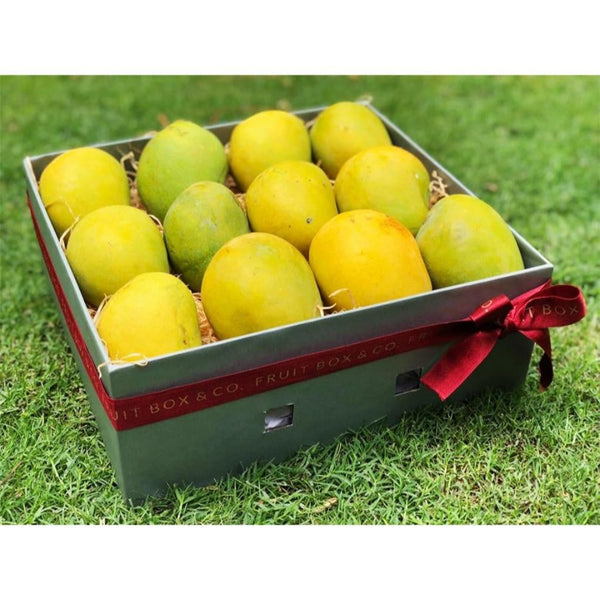 Windsor Box - Mango