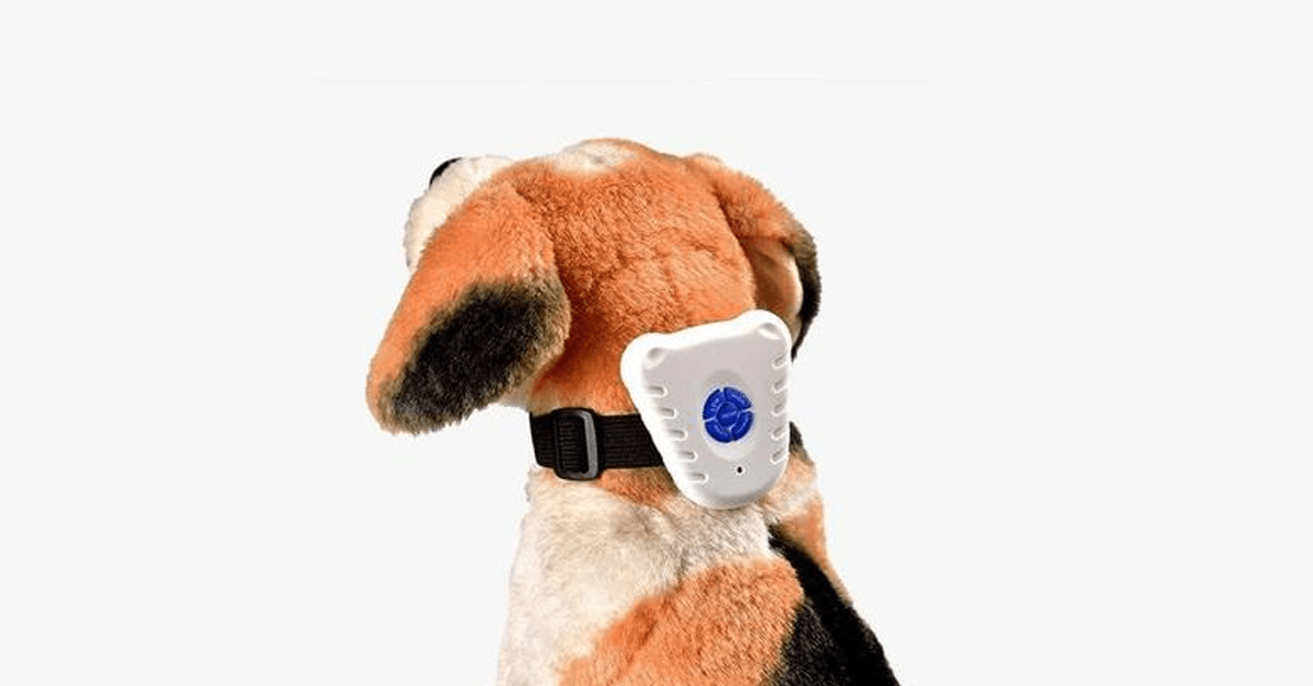 Bark Off: Dog Collar