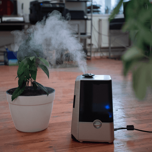 5 Benefits of a Humidifier